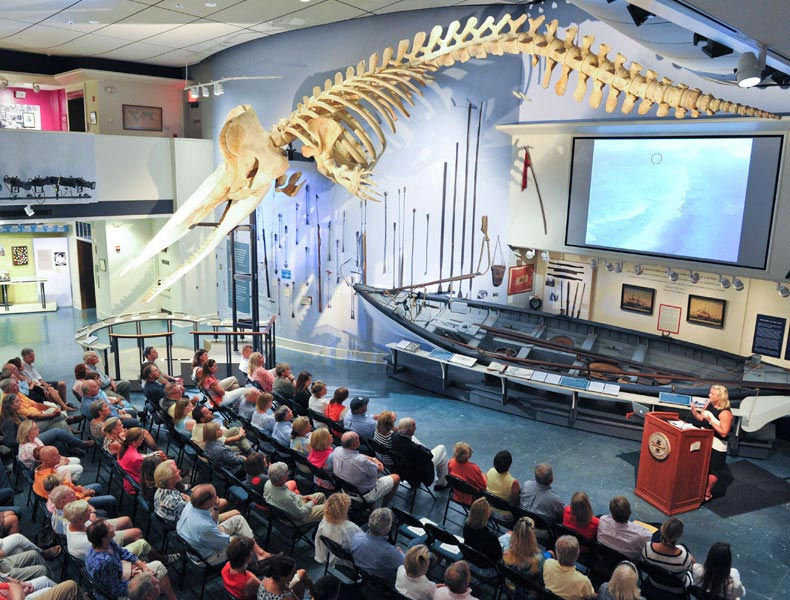 Whaling Museum - Kelly Gleason